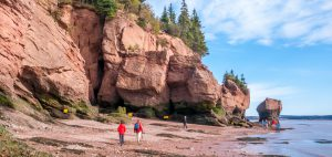 Provincial spotlight: Introduction to New Brunswick for newcomers