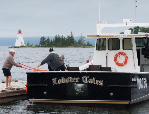 Provincial spotlight: Introduction to Newfoundland and Labrador for newcomers