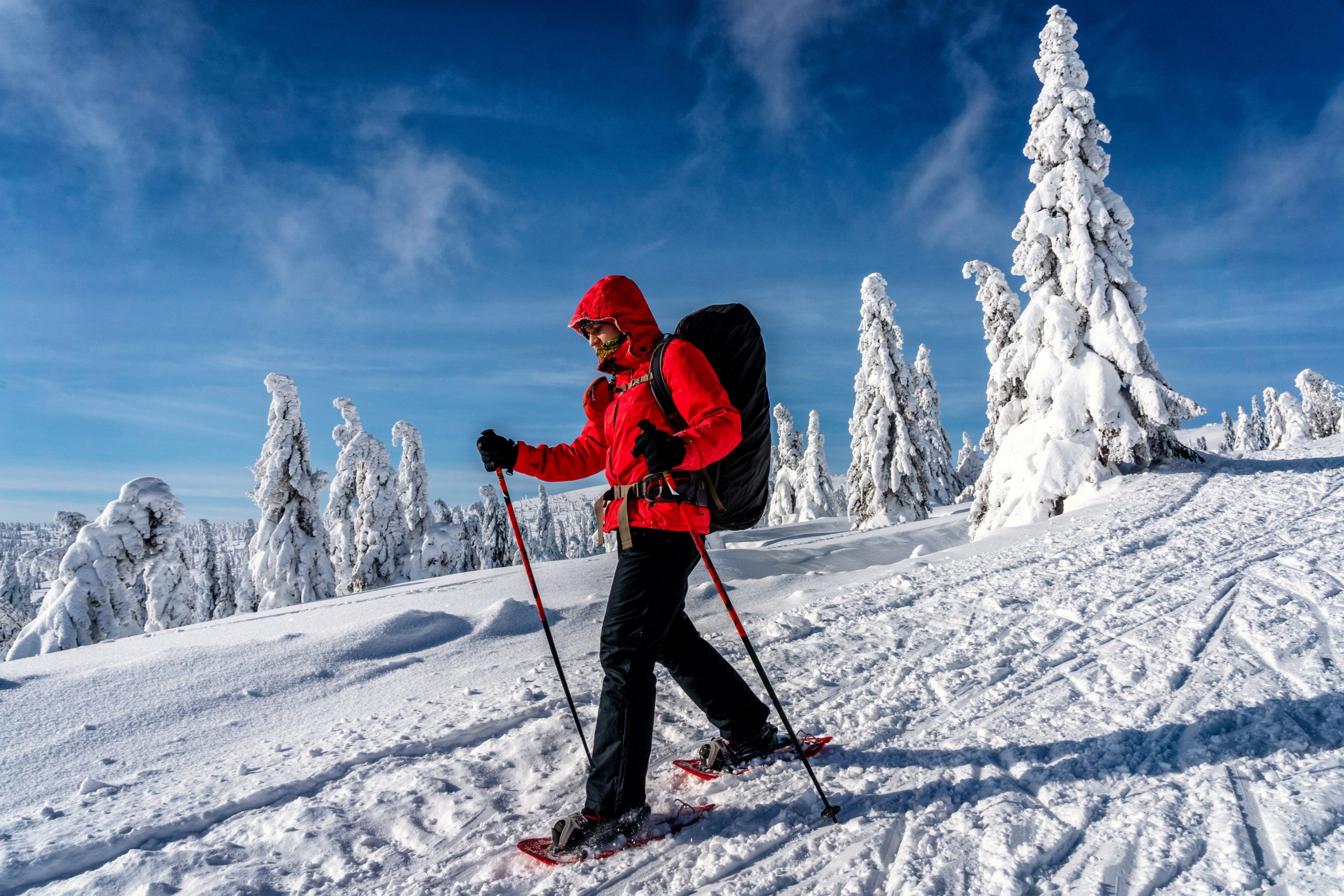 Man in red jacket snowshoeing