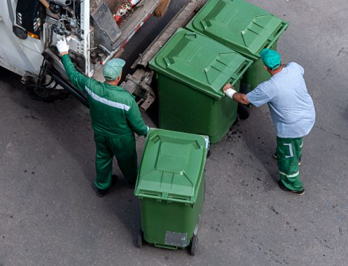 Waste management: Things newcomers should know about recycling and disposal in Canada