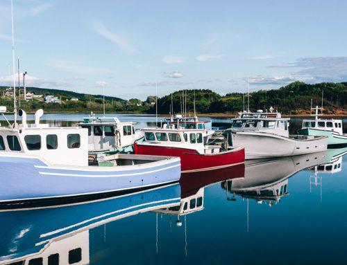How to apply for the Nova Scotia Nominee Program (NSNP)